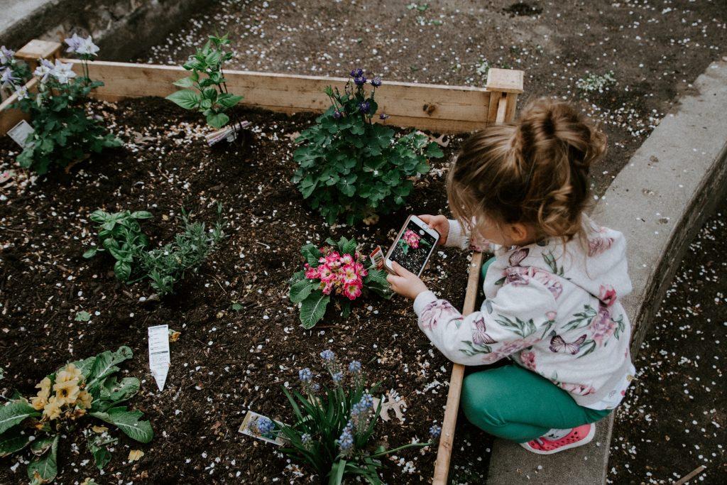 ガーデニングにおけるグリホサート除草剤