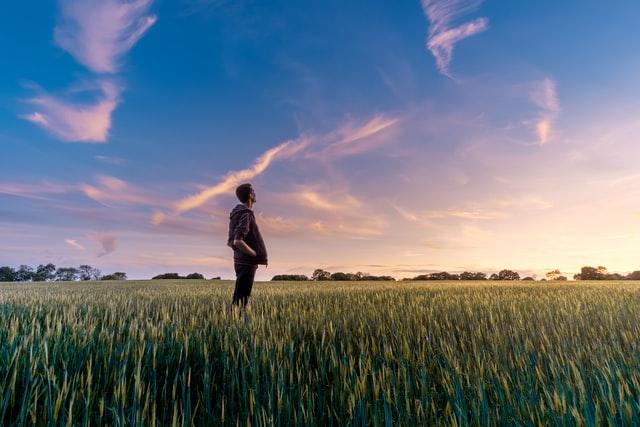 グリホサート 農家 畑
