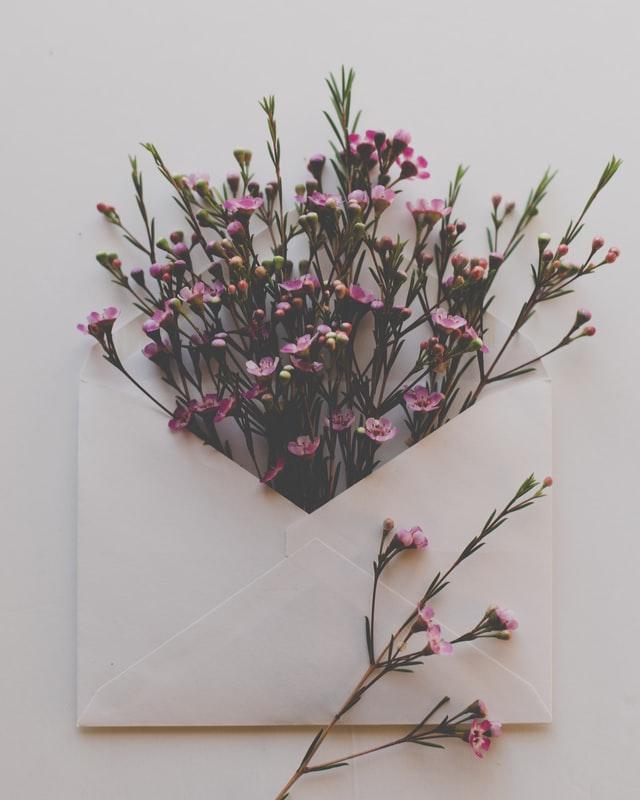 グリホサート 手紙 花
